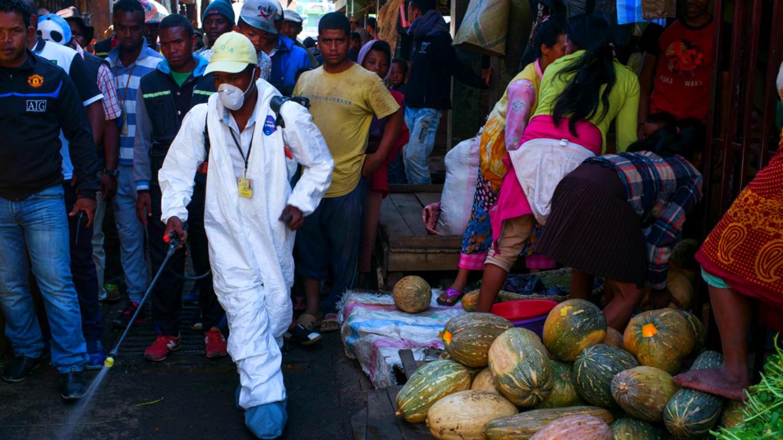 VIDEO. Selon Euronews, la peste progresse à Madagascar