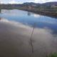 Vend étang pour exploitation piscicole