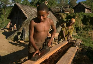 VIDEO. Comment les Zafimaniry construisent leurs maisons sans instruments de mesure
